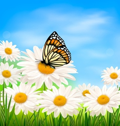 nature background with summer flowers and vector image