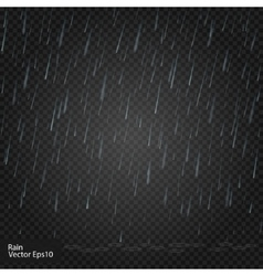 Rain Really transparent effect vector image vector image