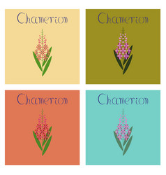 Assembly flat herbal chamerion vector
