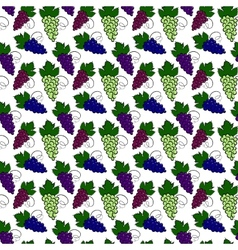 Grapes pattern vector