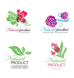 Flower logo 8 vector