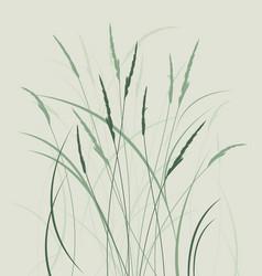 grass in a meadow vector image vector image