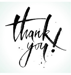 thank you lettering modern calligraphy vector image vector image