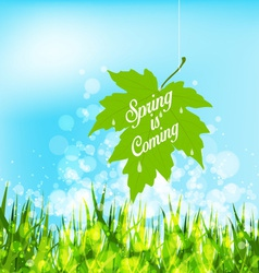 Spring is coming hanging leaf on a strings vector