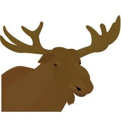 Elk head brown color vector