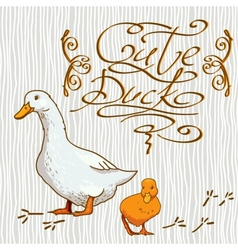 Cartoon Wallpaper with duck vector image