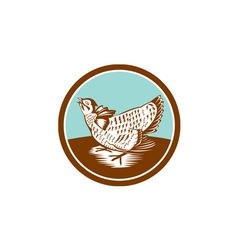 Prairie chicken retro circle vector