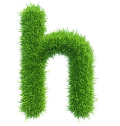 small grass letter h on white background vector image vector image