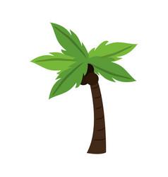 Tropical palm icon vector