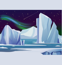 arctic night landscape with vector image