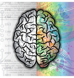 Human brain color pattern vector image vector image