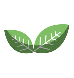 green leaves environment care icon vector image
