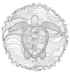 Hand drawn swimming turtle with high details vector