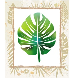 color leaf in a frame vector image