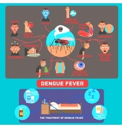 Dengue fever infographics vector