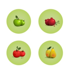 Green and Red Apple Pomegranate Pear Fruits Set vector image