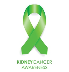 kidney cancer awareness ribbon vector image