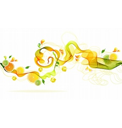Orange and lime juice splash vector image vector image