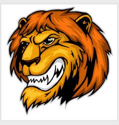 mascot lion head vector image