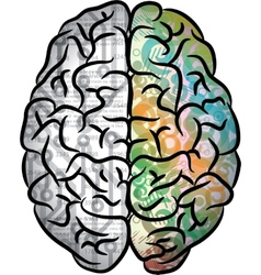 Human brain color vector