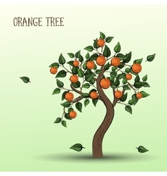 Orange tree with fruits oranges vector