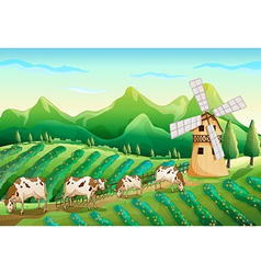 A farm with cows vector image vector image