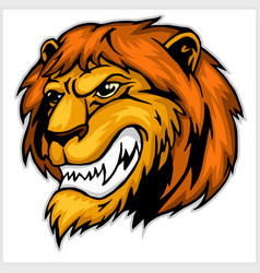 mascot lion head vector image vector image