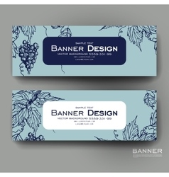 Beautiful banner template with grapes vector