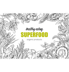 superfood realistic sketch frame design vector image