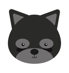 Woodland raccoon animal character cute icon vector