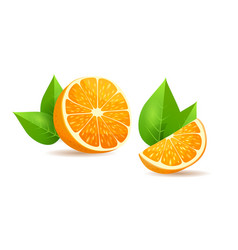 orange with leaves cartoon isolated vector image