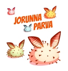 Set of sea cute slug jorunna parva vector