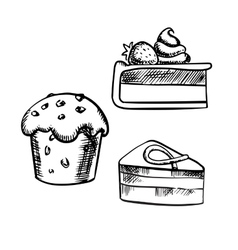 Chocolate cake cupcake and cheesecake vector