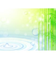 water bamboo vector image vector image