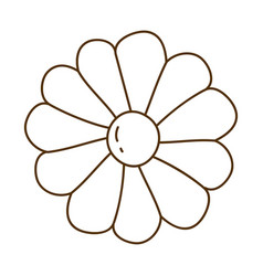 brown silhouette with daisy flower in closeup vector image vector image