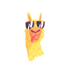 Funny llama character in sunglasses cute alpaca vector