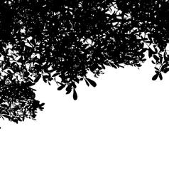Plant 2 vector