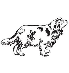 decorative standing portrait of dog cavalier king vector image vector image