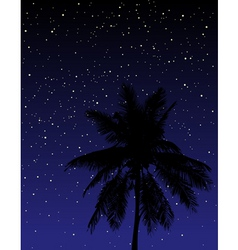 under the stars vector image
