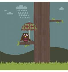 owl umbrella vector image