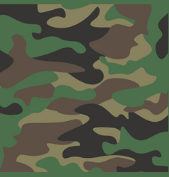 camouflage pattern background classic clothing vector image vector image