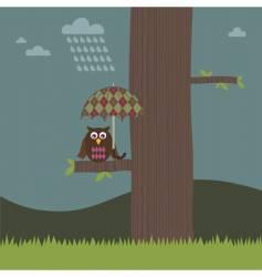 owl umbrella vector image vector image