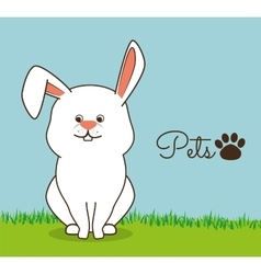 rabbit pet shop icon vector image vector image