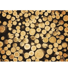 Lumber background vector