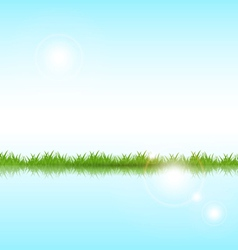 Grass on a lake vector