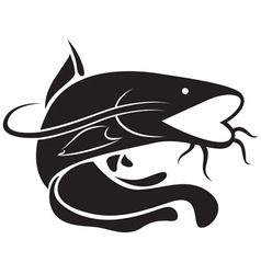 Graphic catfish vector