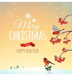 Christmas greeting card poster vector image