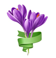 Spring flowers with green ribbon vector image vector image