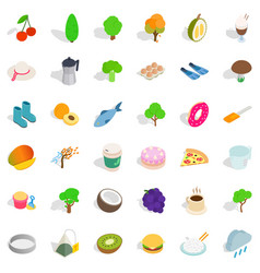 Vegetarian dish icons set isometric style vector