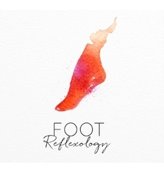 Beauty natural spa foot vector image